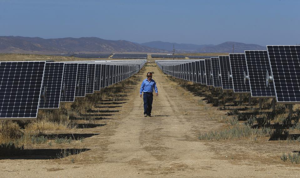 SunPower's west coast operations leader Lance Long walks near solar panels at the California Valley Solar Farm near Santa Margarita, Calif., in San Luis Obispo County, on Fri. August 28, 2015.
