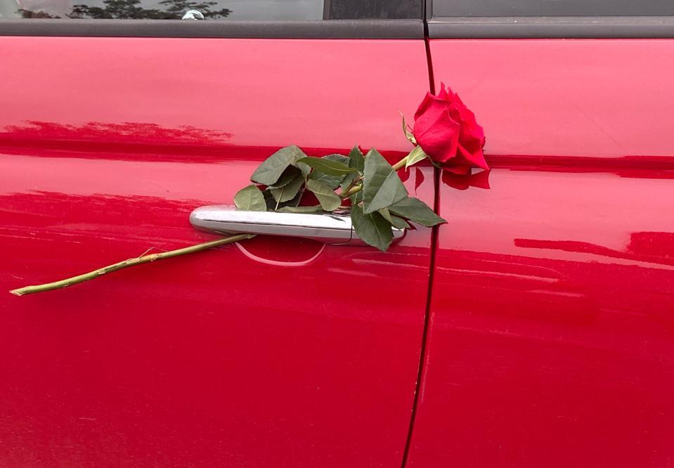 Red rose on red car door handle