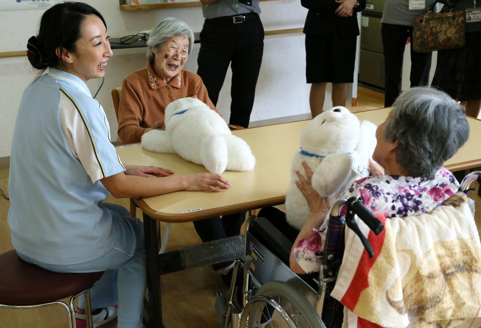 Japan - Health - Nursing Care Robots