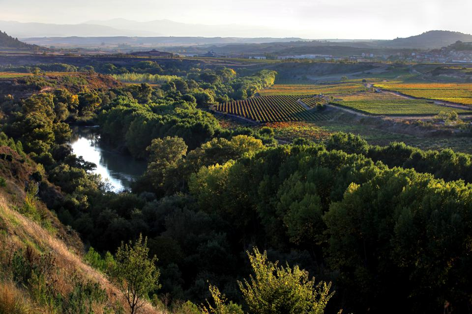 Iconic Wineries Of Rioja