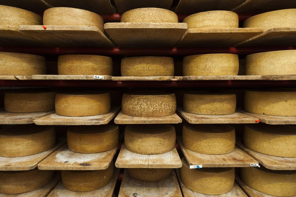 Wheels of raw cow milk cheese age at creamery.