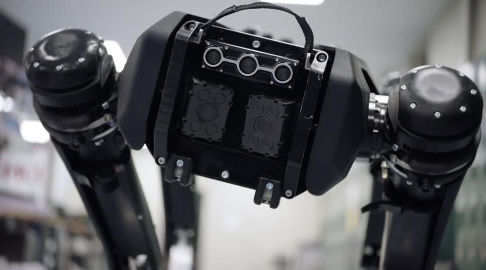 Four legged robot staring into camera
