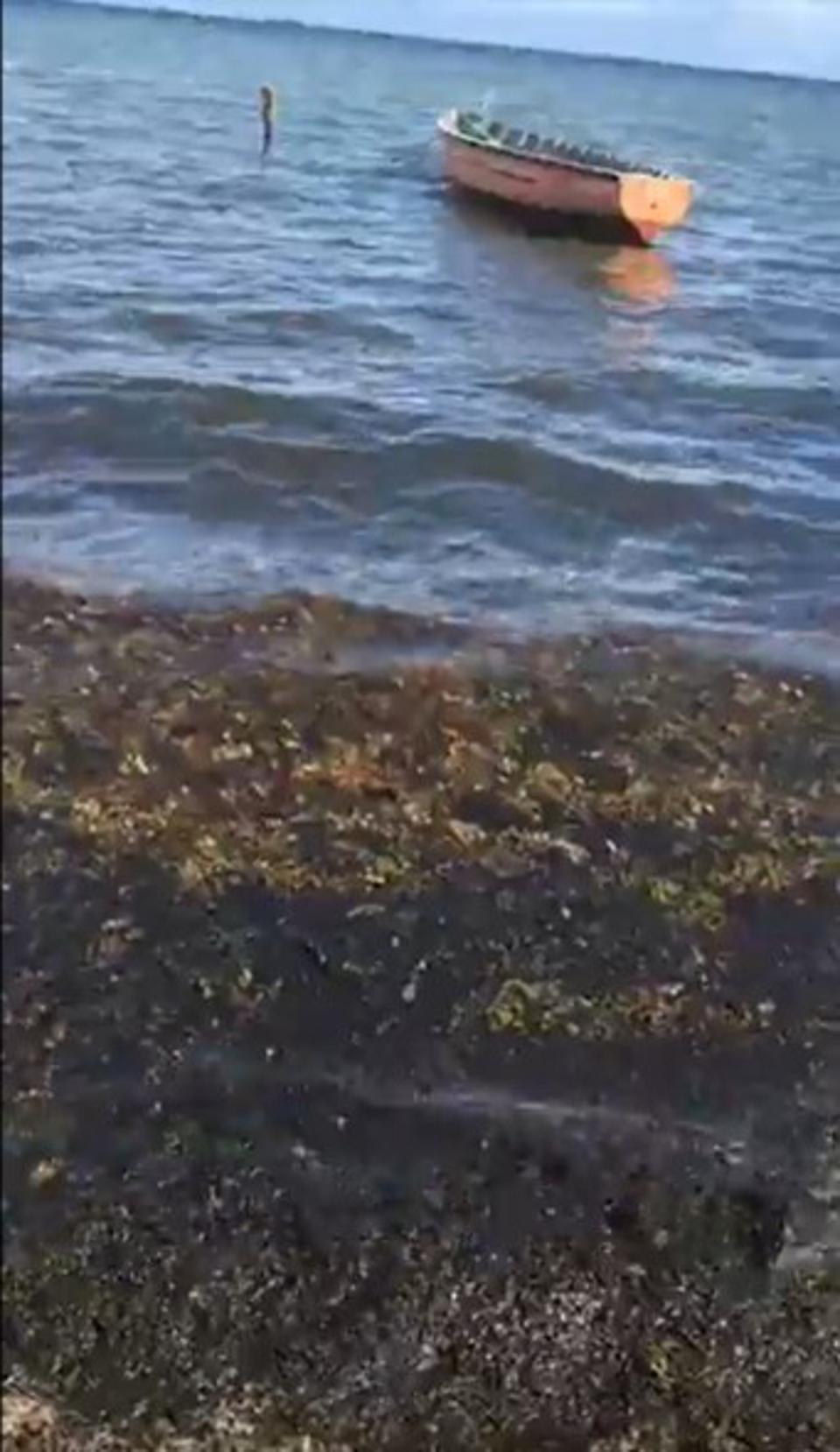 New algal blooms seen in Mauritius on January 5 at the site of beaches that had been drenched in oil since the August 2020 oil spill