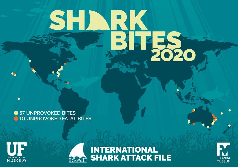 Shark Bites in 2020 from the International Shark Attack File