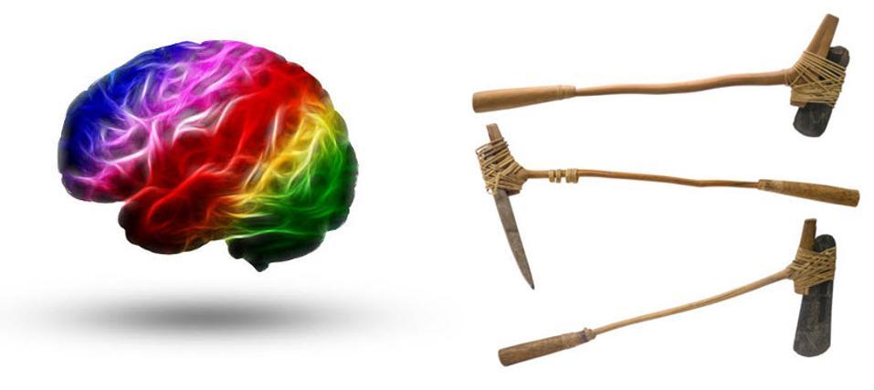 brain vs blunt instrument