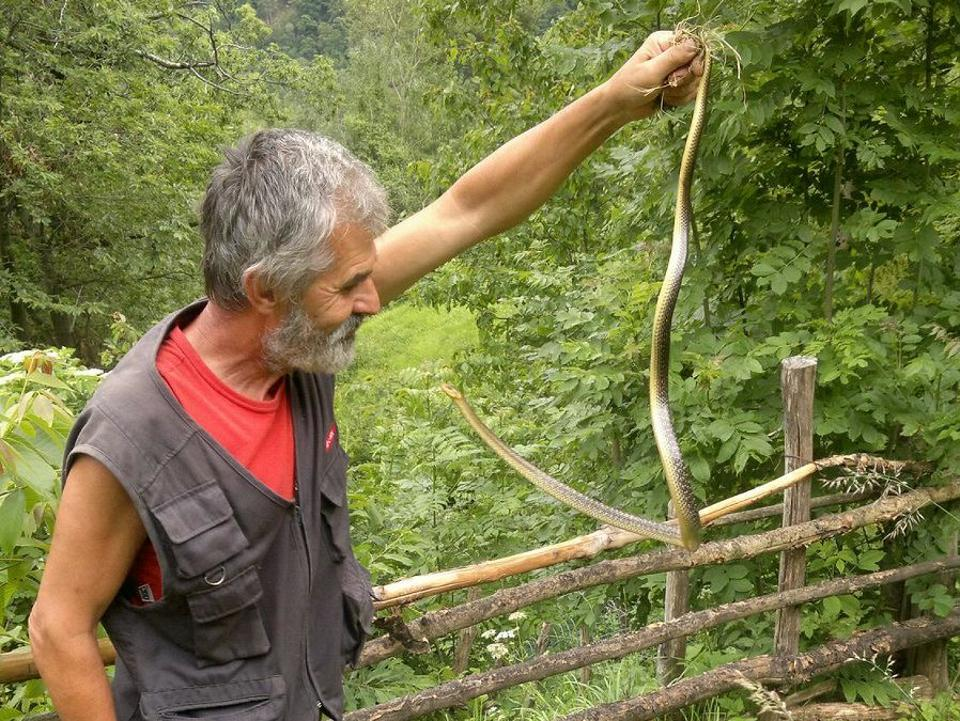Fausto holds a snake