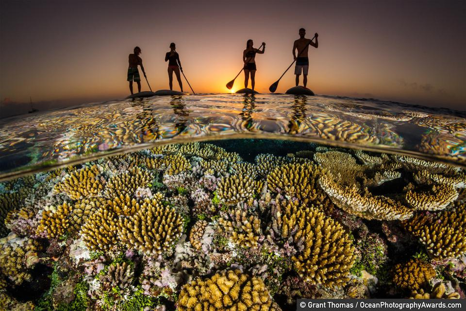 Ocean Photography Awards: Paddle boarders float above a reef in Tonga.