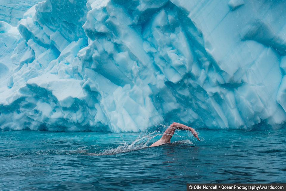 Ocean Photography Awards: Swimmer and environmental activist Lewis Pugh swimming off Antarctica.
