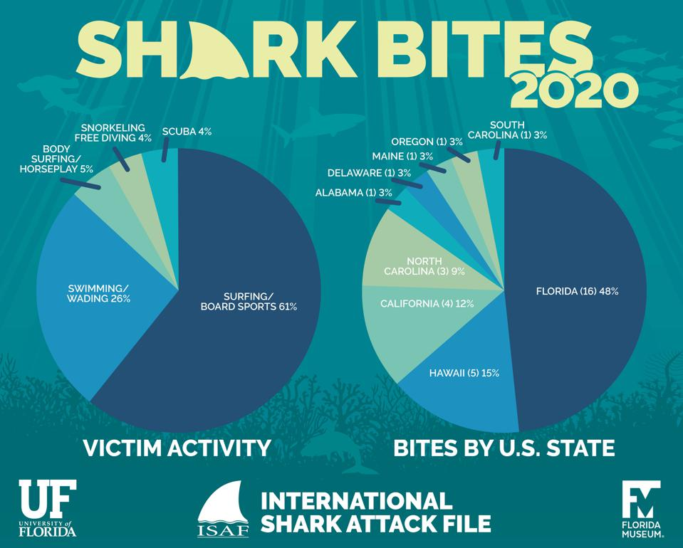 Shark bites by US state and activity in 2020 according to ISAF