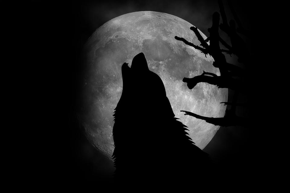 A ″Wolf Moon″ will rise this week.