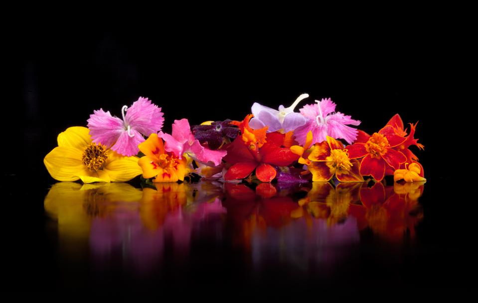 Edible flowers on a black background
