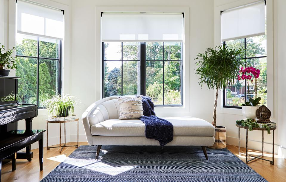 Living room with plants and nature views.