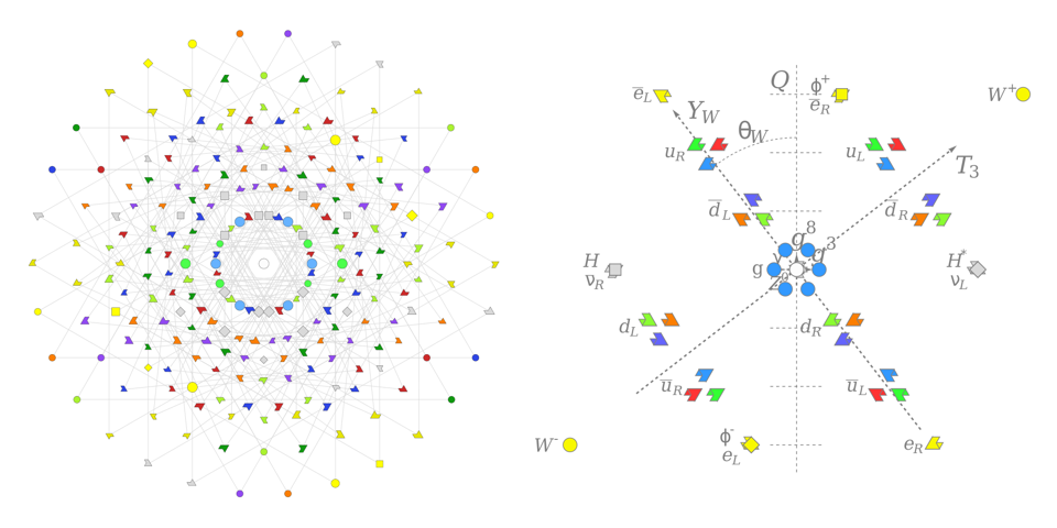 The difference between a Lie algebra based on the E8 group (l) and the Standard Model (r).