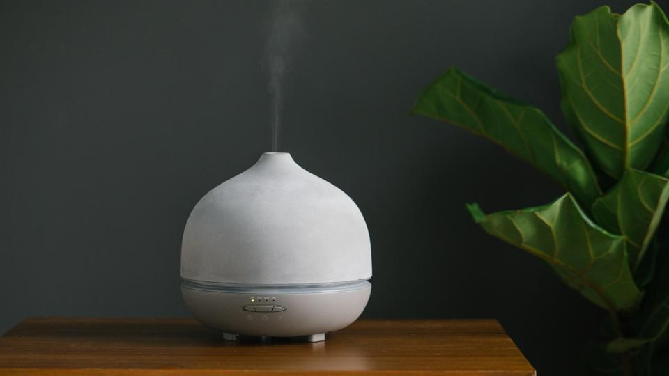 A Saje essential oil diffuser next to a green plant on a wooden cabinet.
