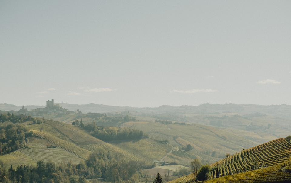Vineyards and rolling hills in Langhe Piedmont Italy.
