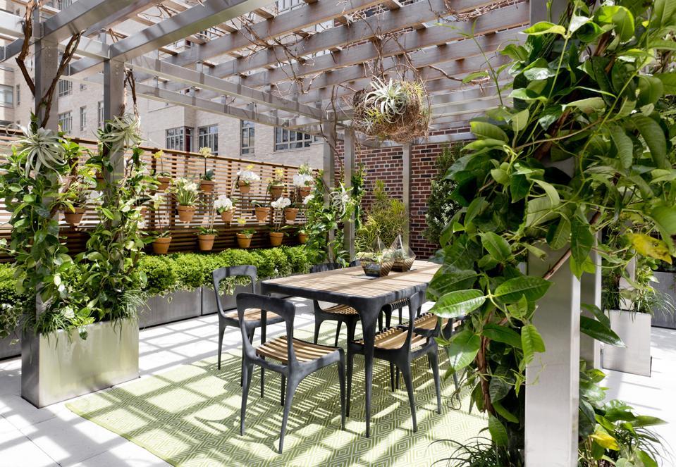 Outdoor dining area under pergola