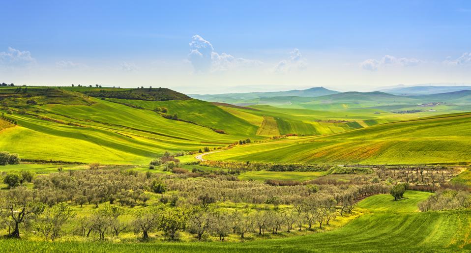 Casas en venta con vistas al campo de Puglia en vivo en italia