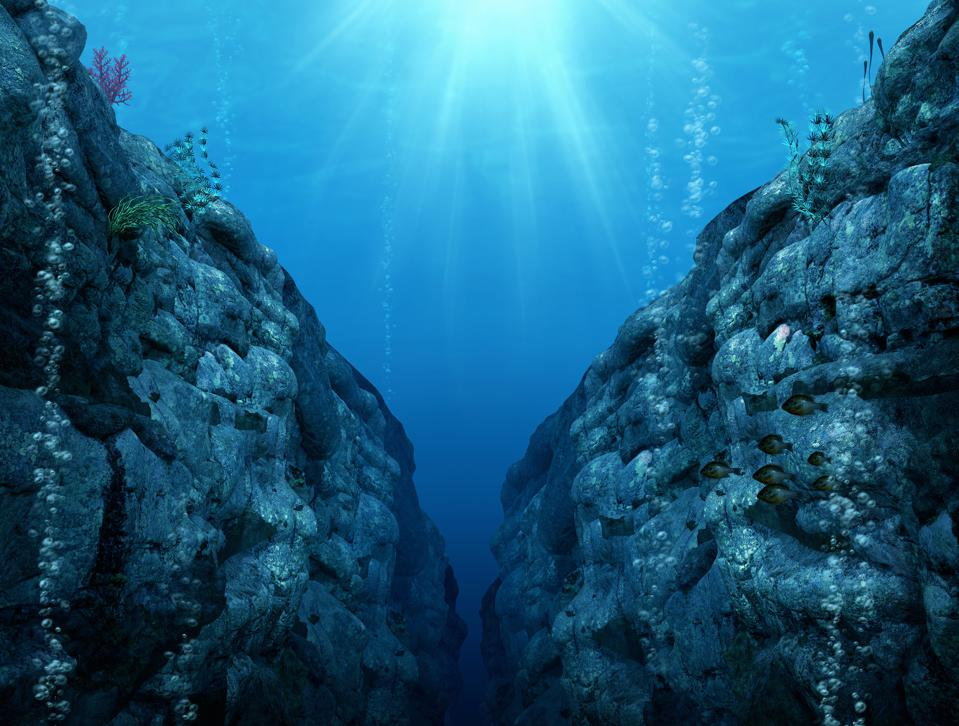 Many conservation groups are working to prevent companies from mining for precious metals deep in the ocean.