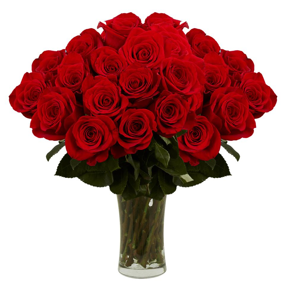Red roses for valentine's day