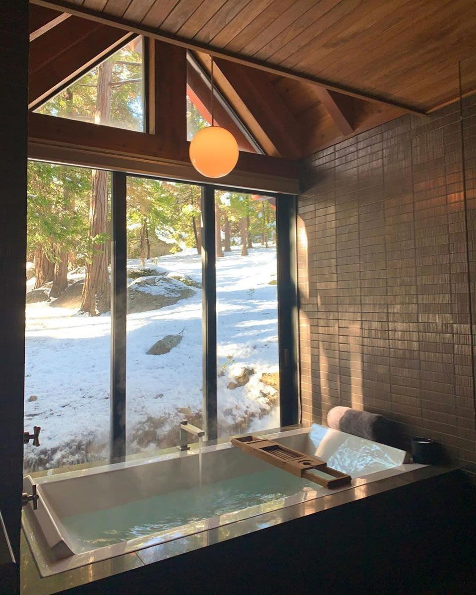A bath with a forest view.