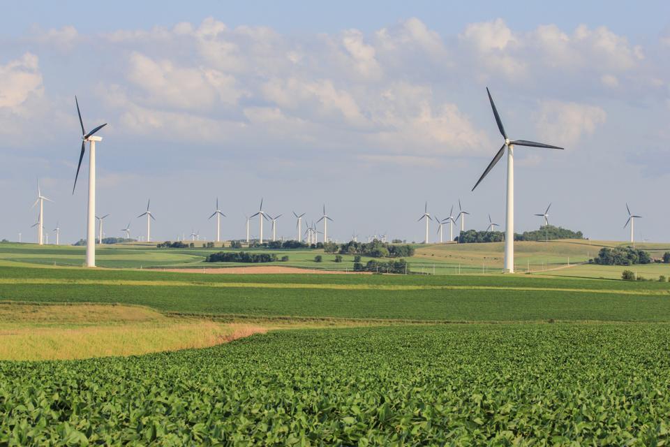Wind turbines on the Buffalo Ridge in southwest Minnesota.
