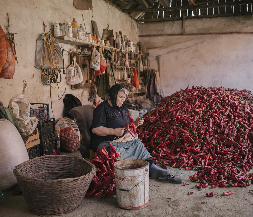 Sony World Photography Awards winning photo of woman seating among red pepper harvest.