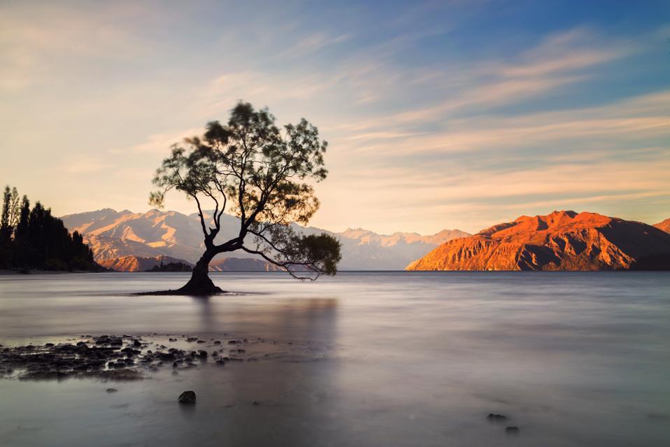 ake Wanaka, New Zealand