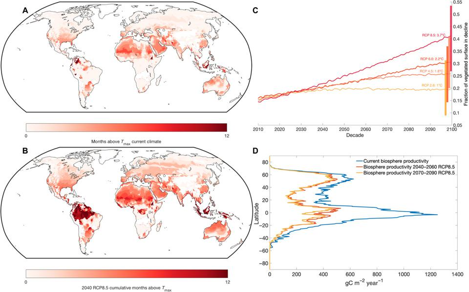 Map of global temperatures exceeding photosynthetic ability of plants.