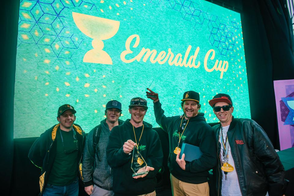 Winners of the 2019 Emerald Cup display their trophies.