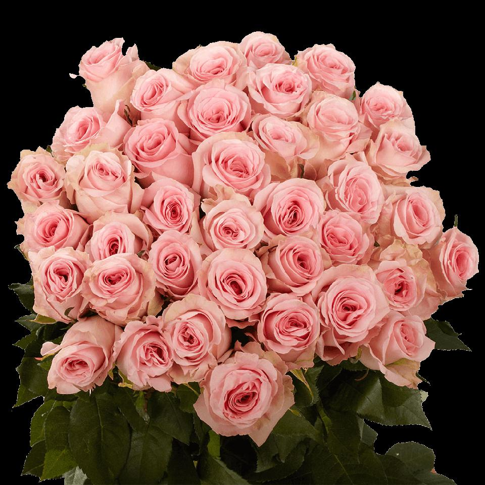 A large bouquet of pink roses.