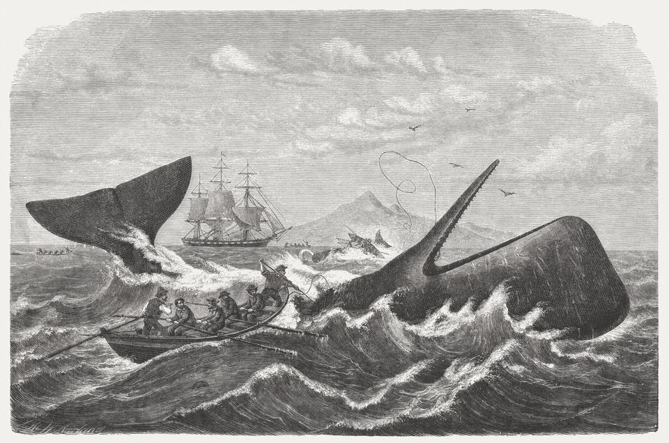 Whalers in action, wood engraving, published in 1869