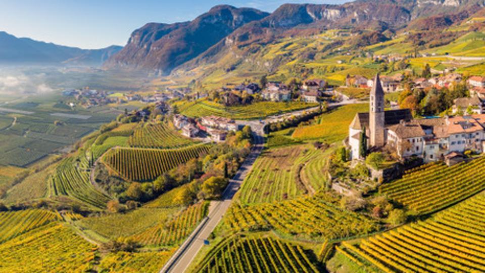 Vigneto Cantina Cortac in Alto Adige, Italia.