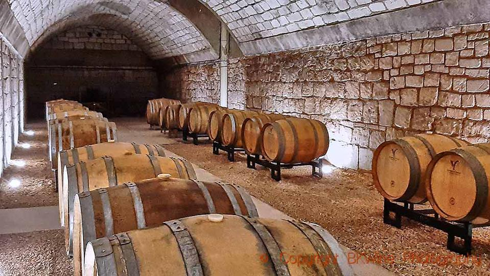 The barrel cellar at Champagne Domaine Vincey