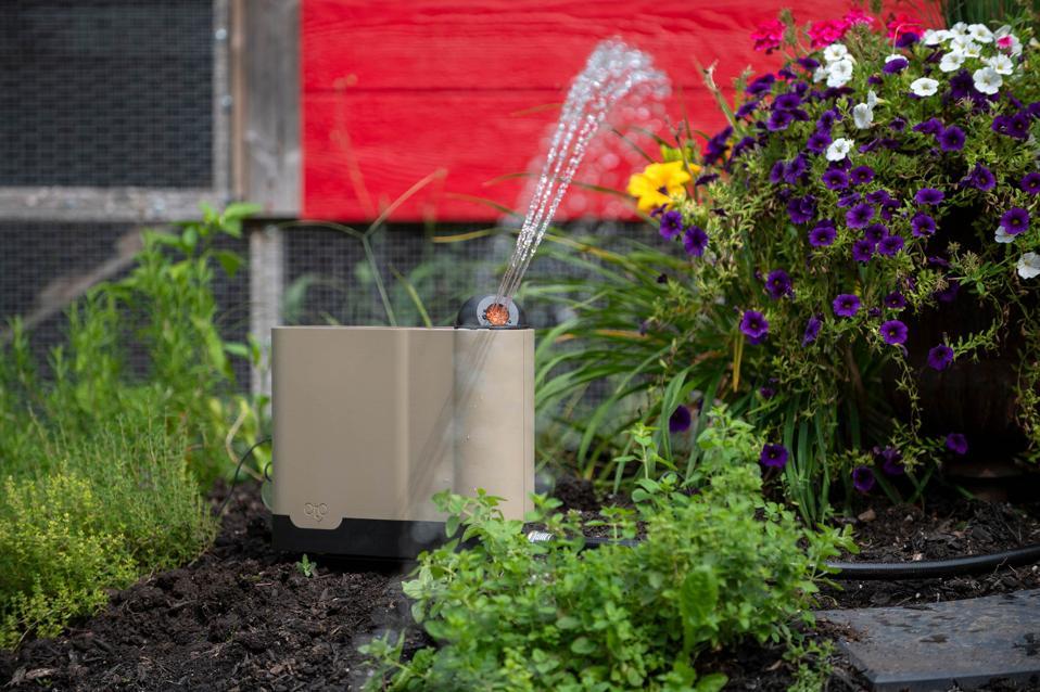 The OtO Lawn smart sprinkler flowers lawn yard