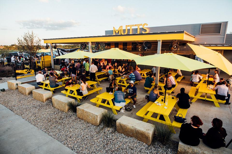 Courtesy of MUTTS Canine Cantina® outdoor patio with picnic tables and people sitting