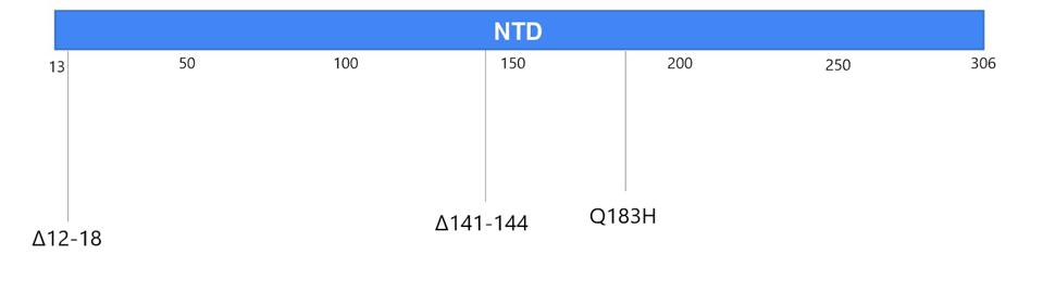 Figure 4. Visual representation of mutations to the N-terminal domain.
