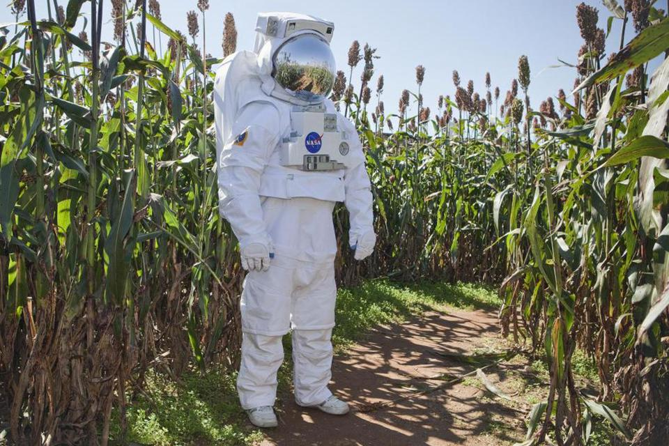 Space suited astronaut standing in a cornfield.