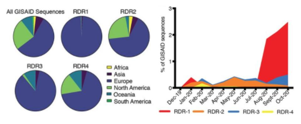 Geographic, genetic, and temporal abundance of RDR variants.