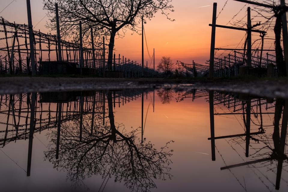 Sunset in Valpolicella, Veneto, Italy after Rain