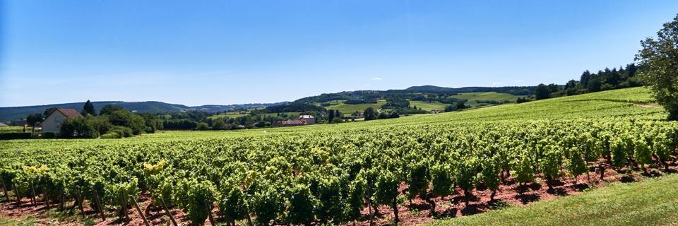 Europe. France. Bourgogne-Franche-Comté. department. 71640 Mellecey. Château de Germolles.