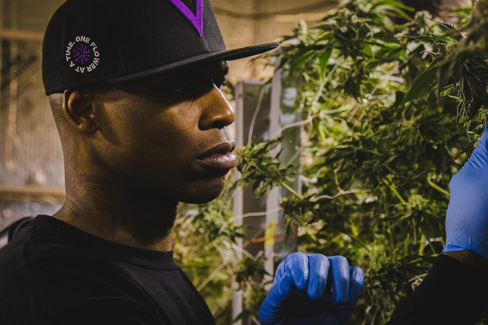 Al Harrington, cannabis entrepreneur,founded an incubator to expand opportunities for minorities.
