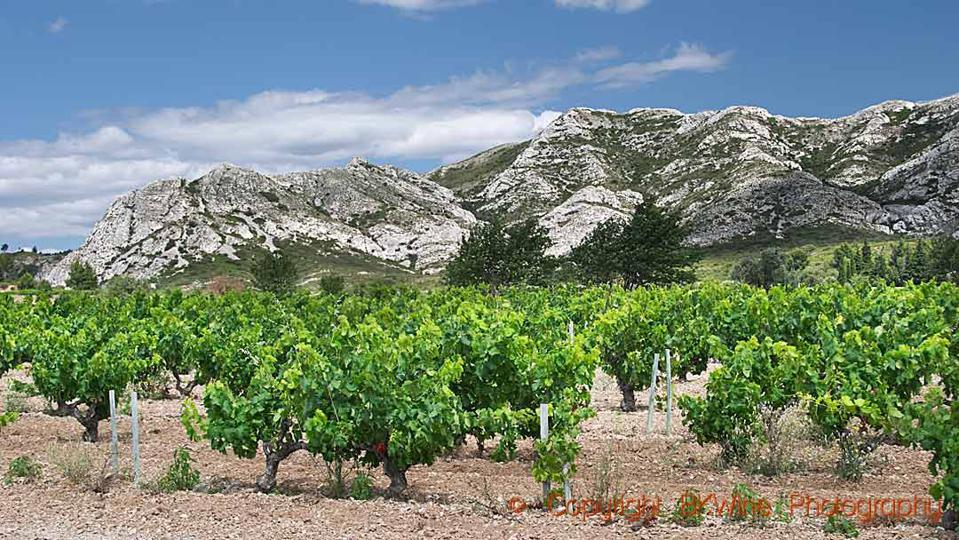 The Alpilles chain and the Beaux en Provence vineyards
