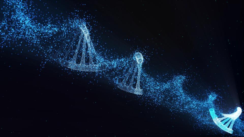 DNA molecule model.