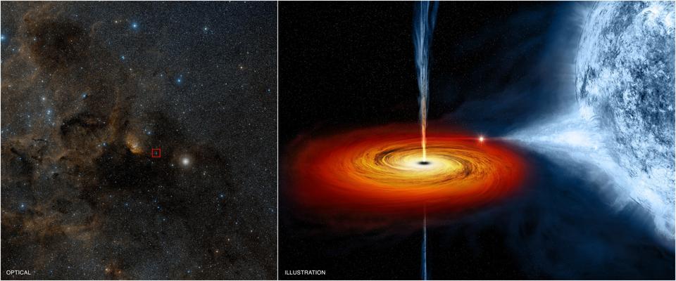 A stellar mass black hole orbiting a companion star located 6,000 light-years away.