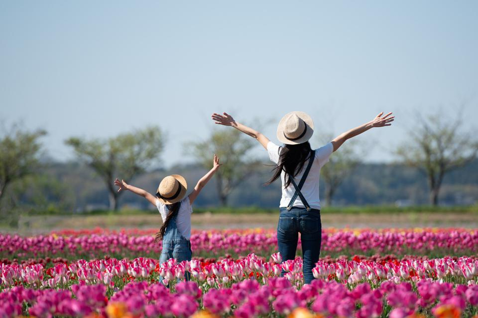 Mother and child raising their hands in the flower field