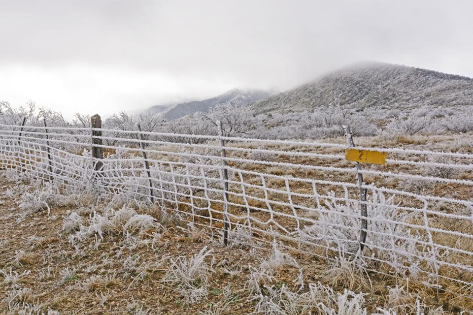 Texas Ranch in an Ice Storm