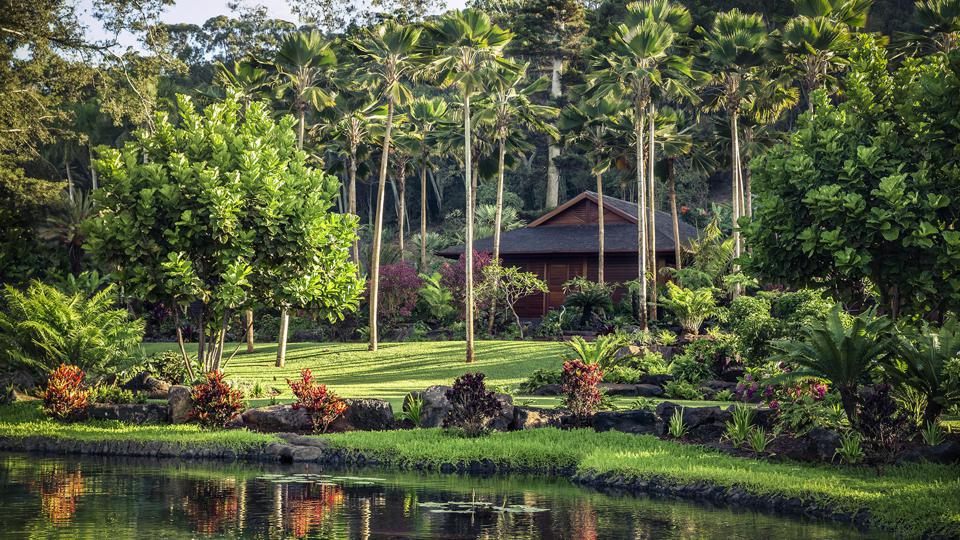A wooden structure next to lush foliage and a pond