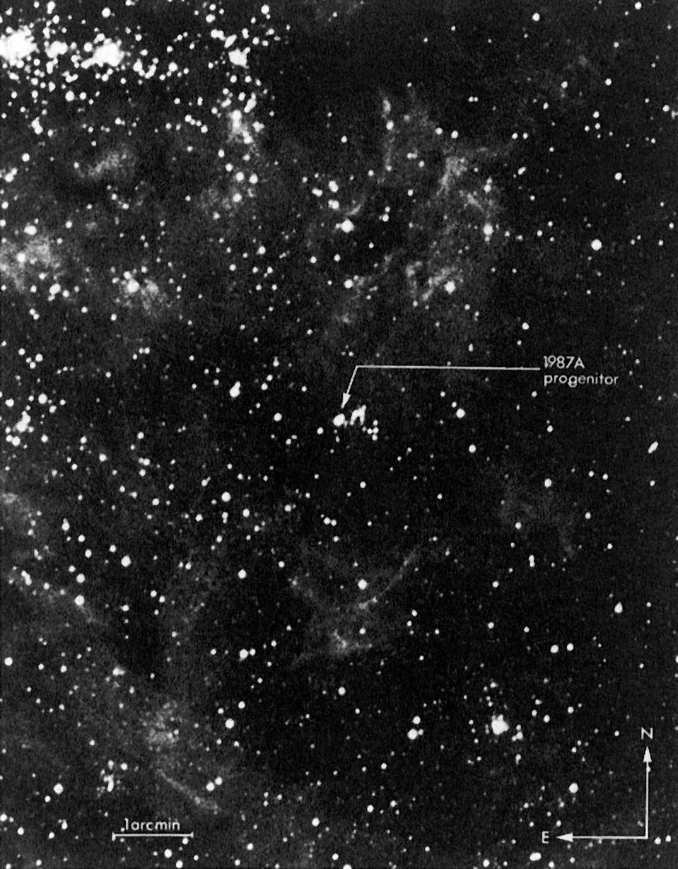 supernova progenitor