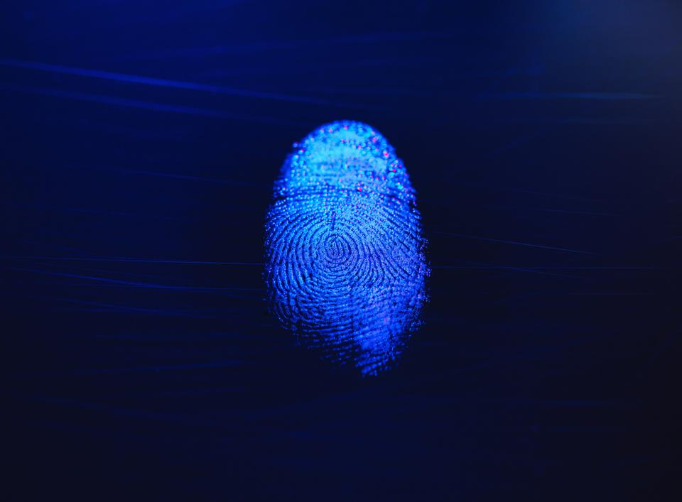 Human finger print as evidence of identity and as a password