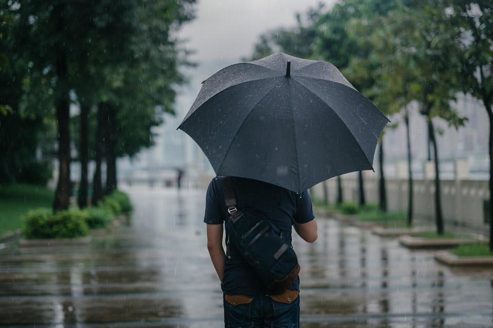 Rear view of male holding umbrella in rainy city